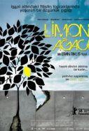 etz-limon-lemon-tree